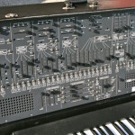 arp26005
